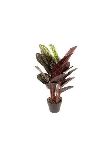 Mikasa Moor Galadya Yapay Çiçek 70cm Yeşil